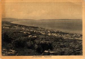 PANORAMA  1 TG 1956